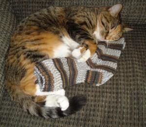 socks-for-julie