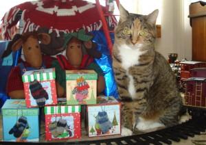 christmas-socks-2008-boxes